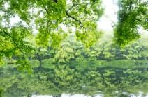 2019 特集vol.4 軽井沢ゴールデンウィーク特集/令和の始まりを桜咲く軽井沢で
