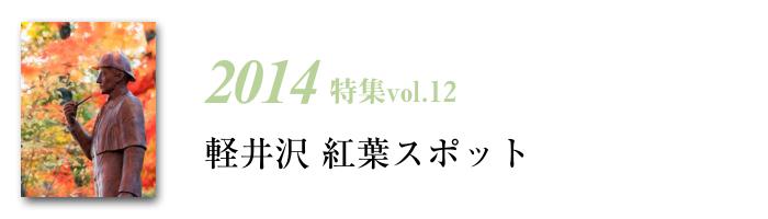 2014tokusyu12