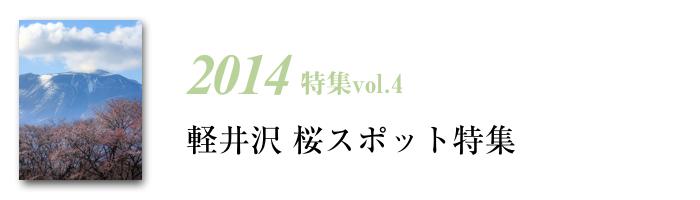 2014tokusyu4
