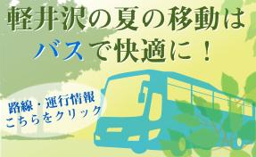 夏の移動はバスで快適に!
