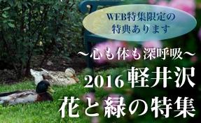 軽井沢 花と緑の特集 2016
