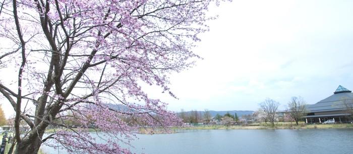 » 4/27〜29·5/2〜6『軽井沢大賀ホール2019春の音楽祭』〜音楽祭で始まる軽井沢の春〜