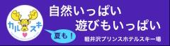 アクセス抜群の駅前ゲレンデ・軽井沢プリンスホテルスキー場