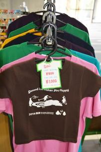 » 軽井沢国際カーリング選手権大会2014オリジナルTシャツ