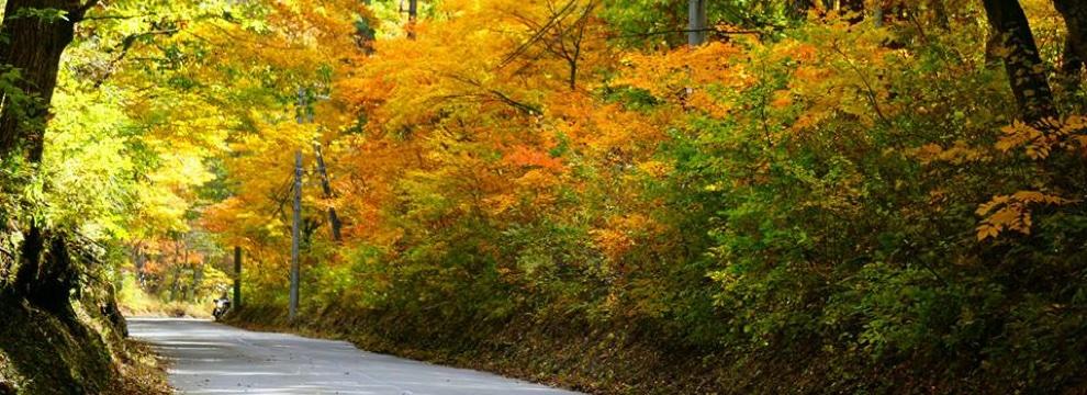 軽井沢の秋 2
