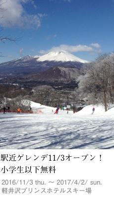 2016tokusyu11_ski1_230x400