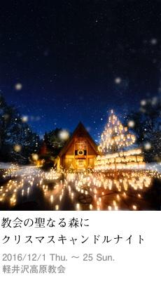 2016tokusyu12_kogen1_230x400