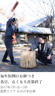 2016tokusyu13_mochi1_230x400