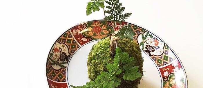 » 万平ホテルで体験する苔玉作り/ラブジャパンブランド