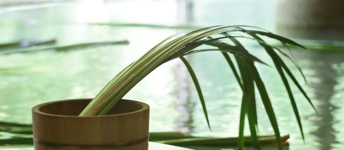 » 星野温泉 トンボの湯「菖蒲湯」