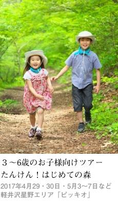 2017tokusyu3_piccio1_230x400