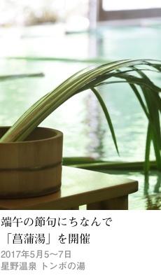 2017tokusyu3_tombo1_230x400