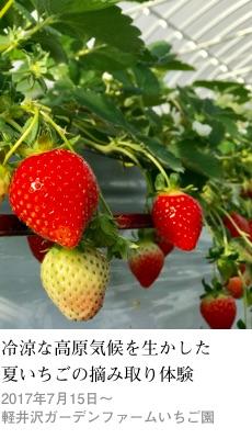 2017tokusyu5_gardenfarm1_230x400