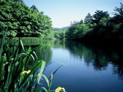 » 雲場池の整備工事を行います/平成29年11月中旬から平成30年4月中旬まで