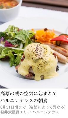 2017tokusyu7_harunire1_230x400
