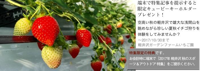 2017tokusyu8_ichigo1_700x250