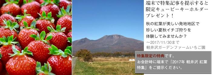 2017tokusyu10_gardenfarm1_700x250