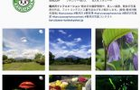 Instagram「軽井沢インフォメーション」
