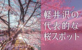 軽井沢の代表的な桜スポット