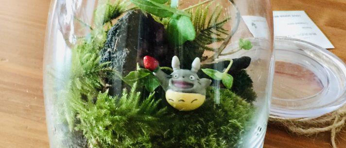» 軽井沢の苔庭(テラリウム)づくり Web限定のプレゼント特典あります/ラブジャパンブランド