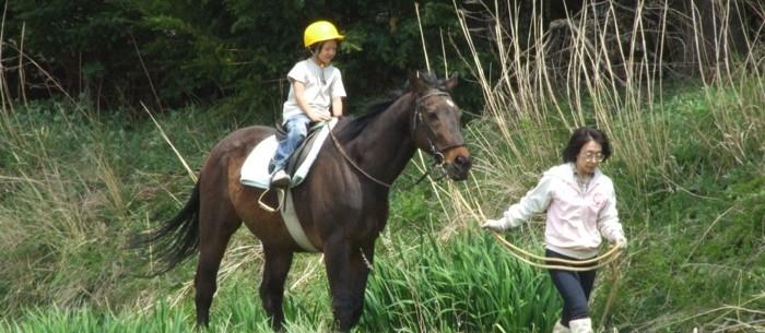 » 春の乗馬体験(予約制)①9:00〜 ②10:30〜/若葉まつり2019