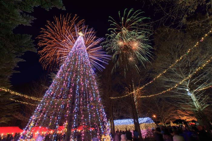 whitechristmasinkaruizawa2014